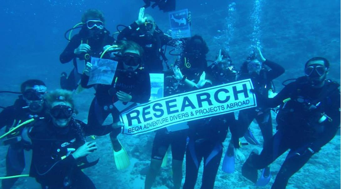 Shark Conservation interns hold a research sign underwater in Fiji.